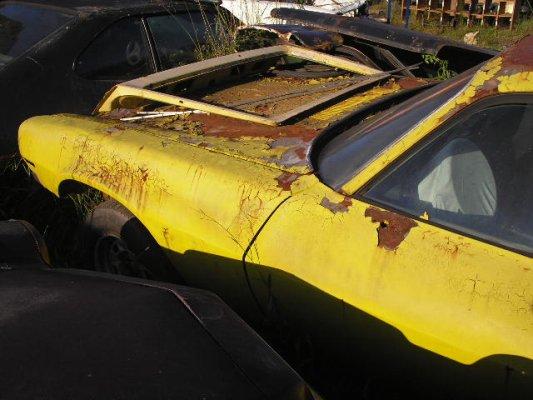 camaro5 Chevrolet Camaro - Quatro, de uma vez! Loucura! Em SC.