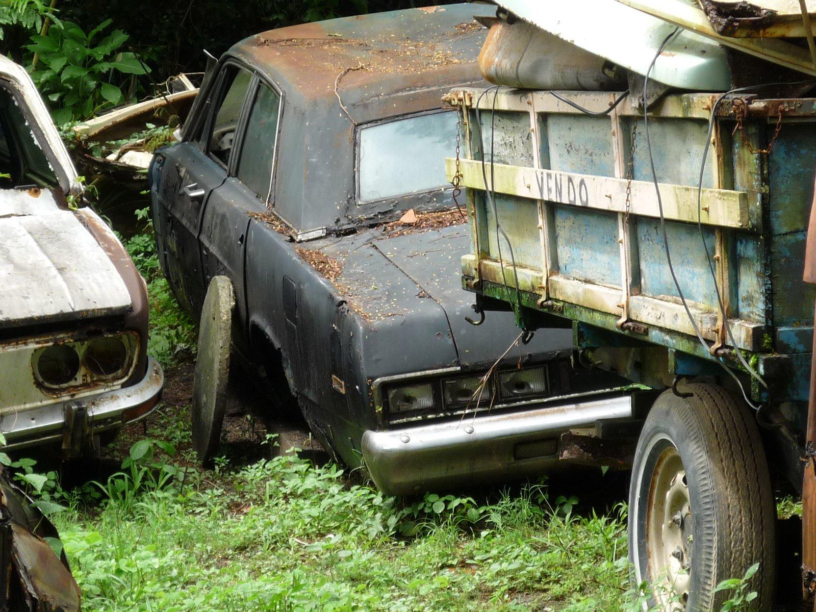 p1000286 Ford Landau