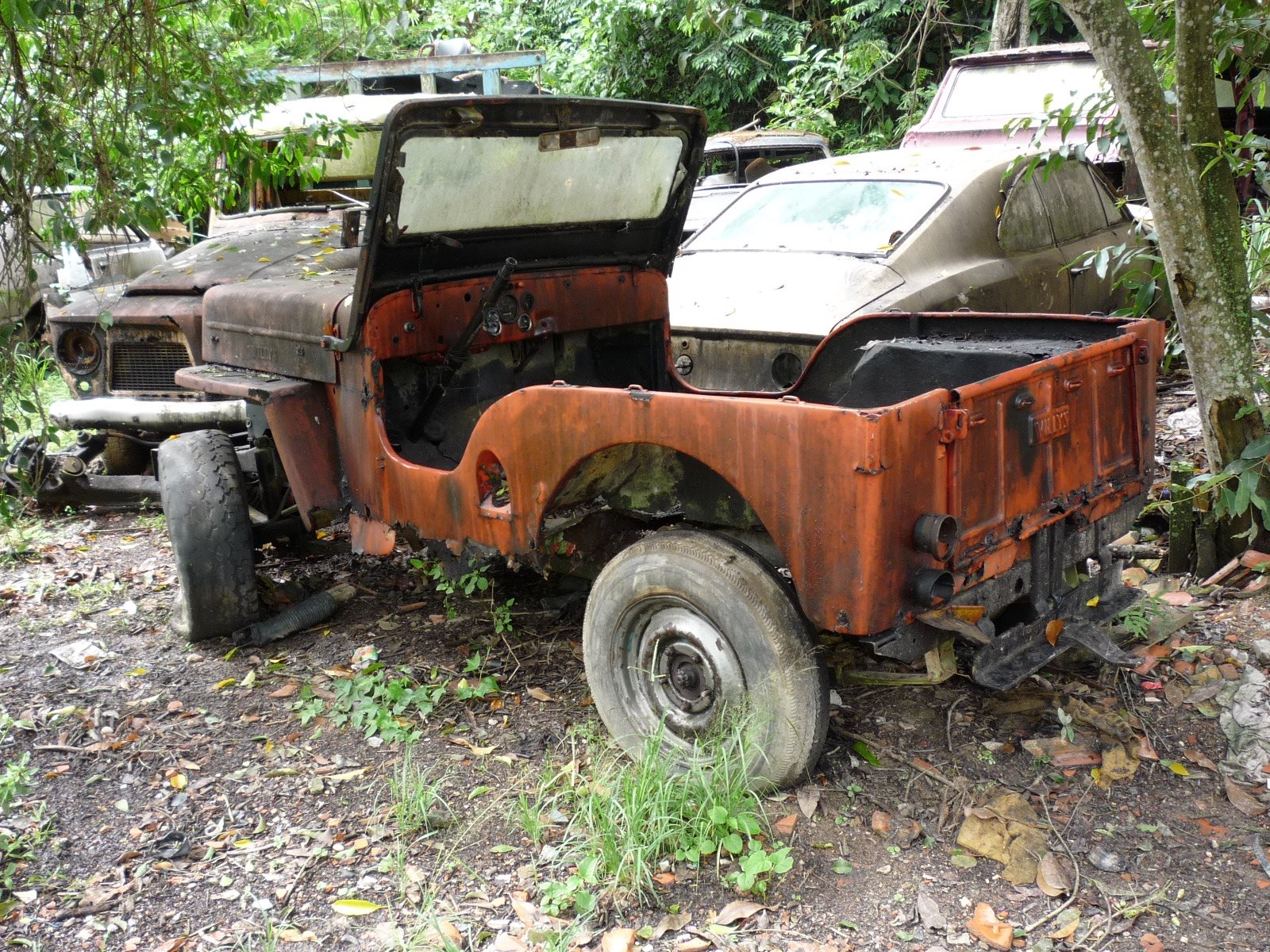 p1000287 Dupla de Jeep Willys (afins!)