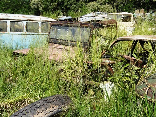 jeep2 Willys Jeep, dupla em meio à relva!