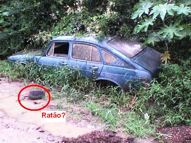 marcelokt10 VW TL