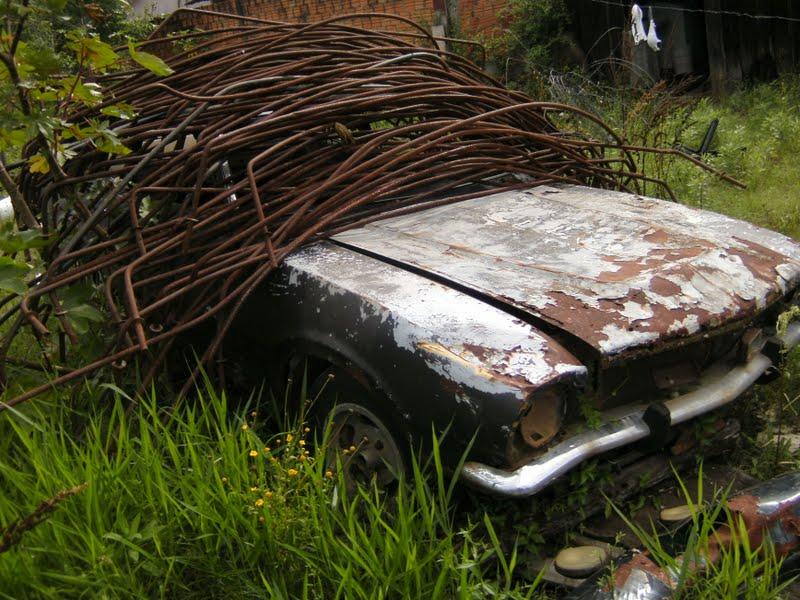 ricardo-flores-maveco2 Ford Maverick