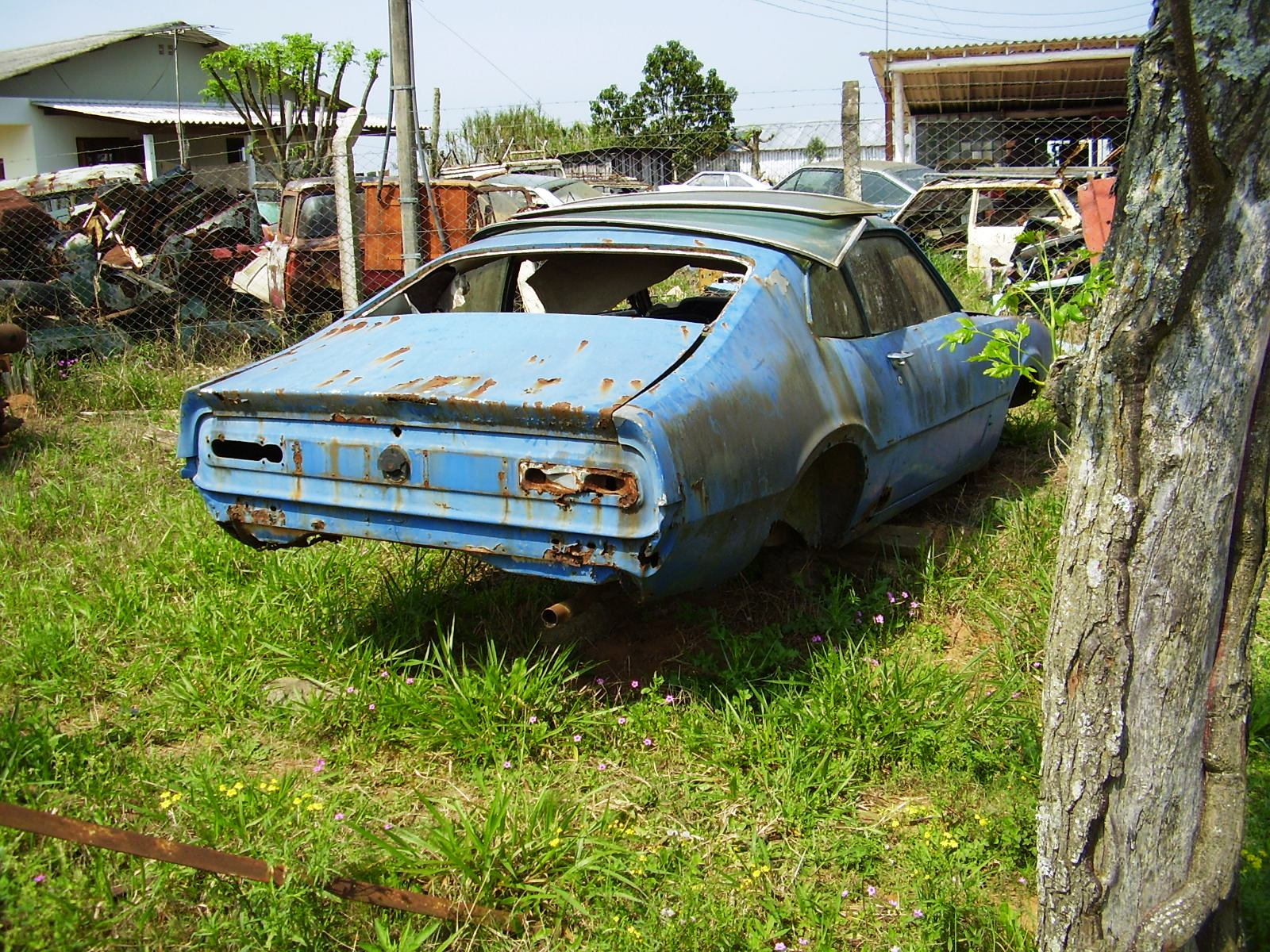 Tags: Ford Maverick