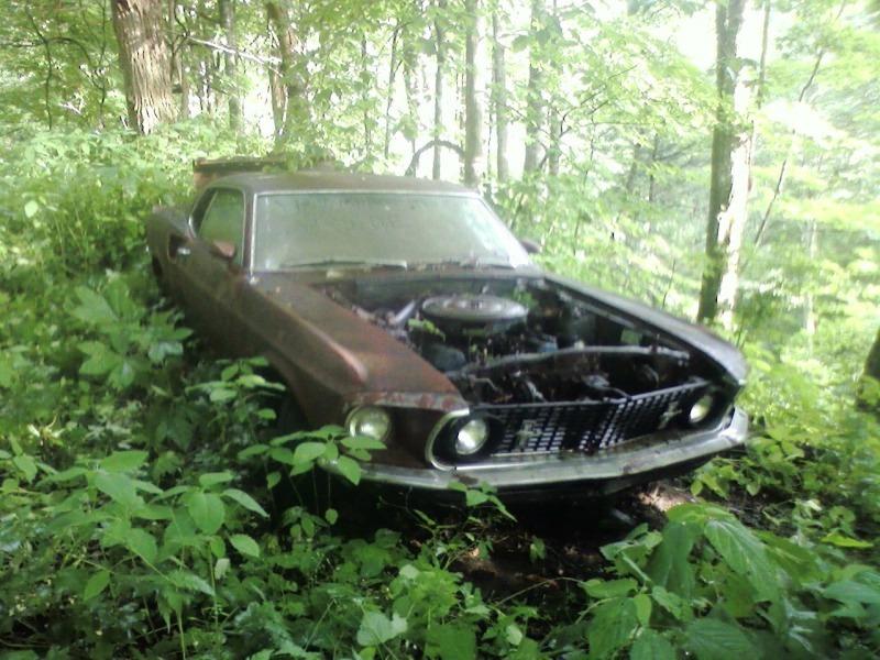 umustang_cesar-roentgen_north-carolina Ford Mustang