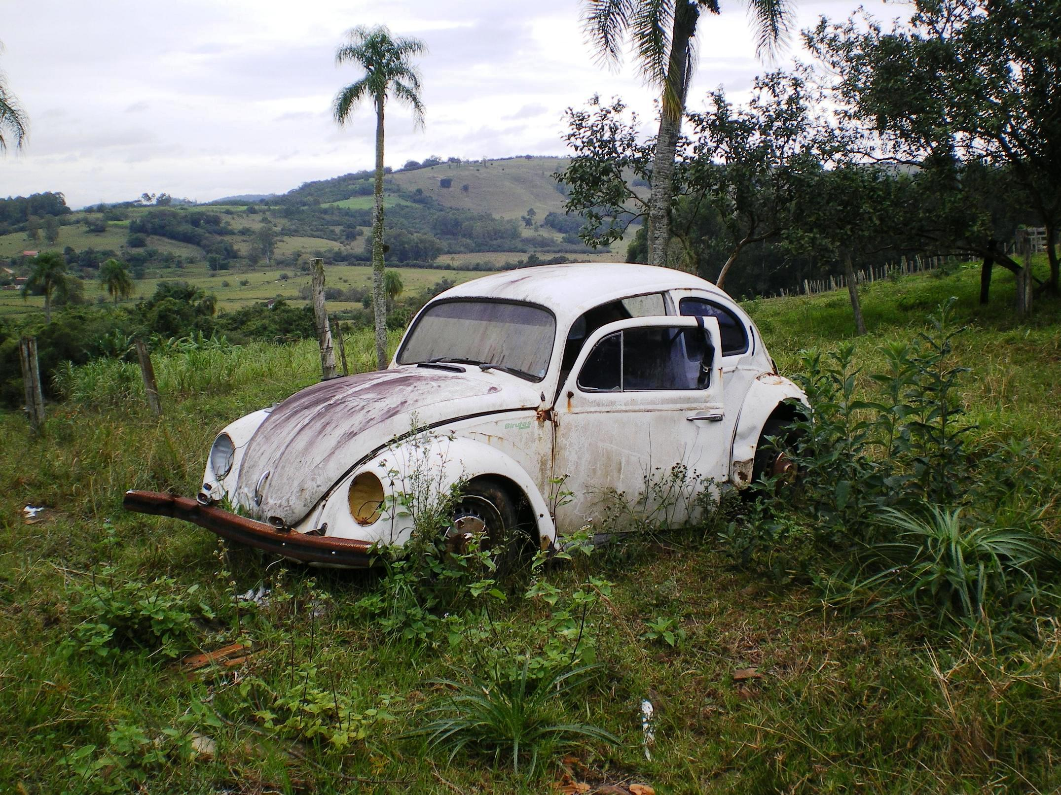 umarcelo-fernandes-ovo1 Volkswagen Fusca