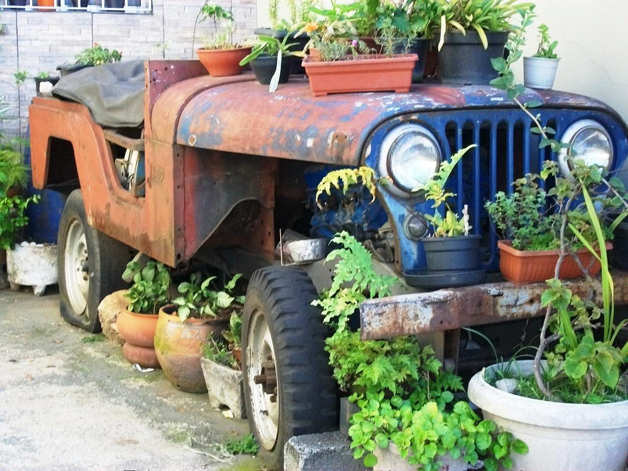 lucas_jeep_willys_sao-paulo_capital_02 Jeep Willys